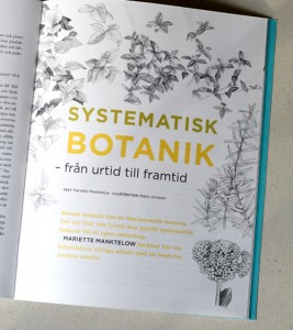 Illustration Systematisk botanik